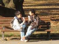 20081123_00069_2