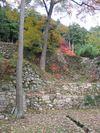 20081130_00453