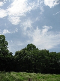 20090725_00266