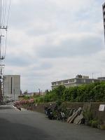 Kokonimotawaga3