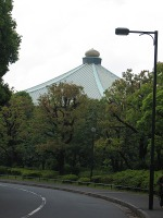Sinryokunotamanegi