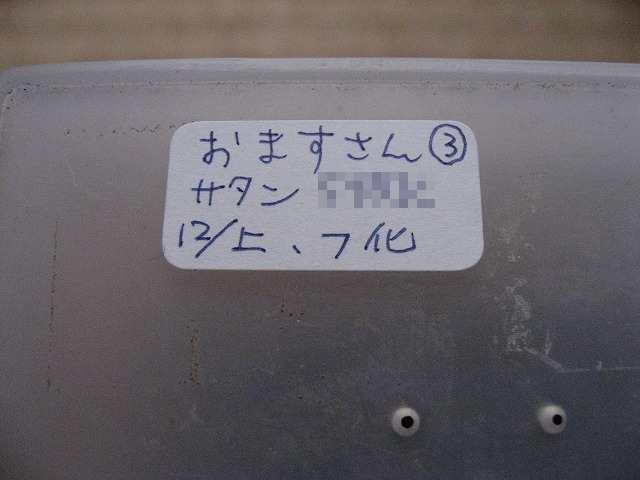 20080203_01209_2