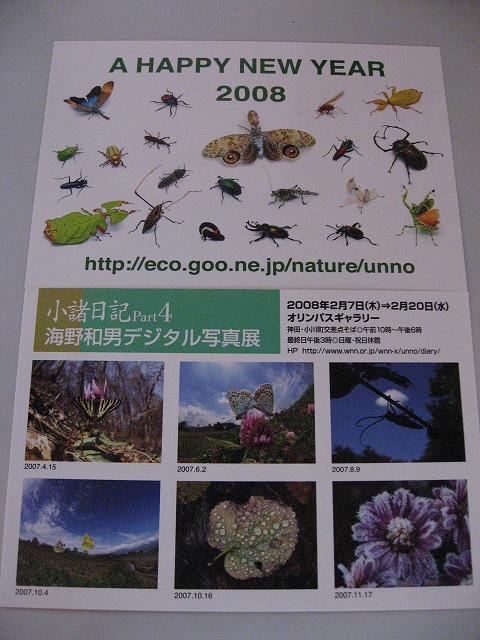 20080210_01273