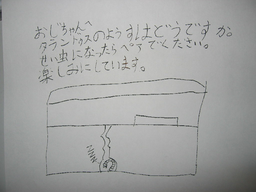 Img_3073taraoi
